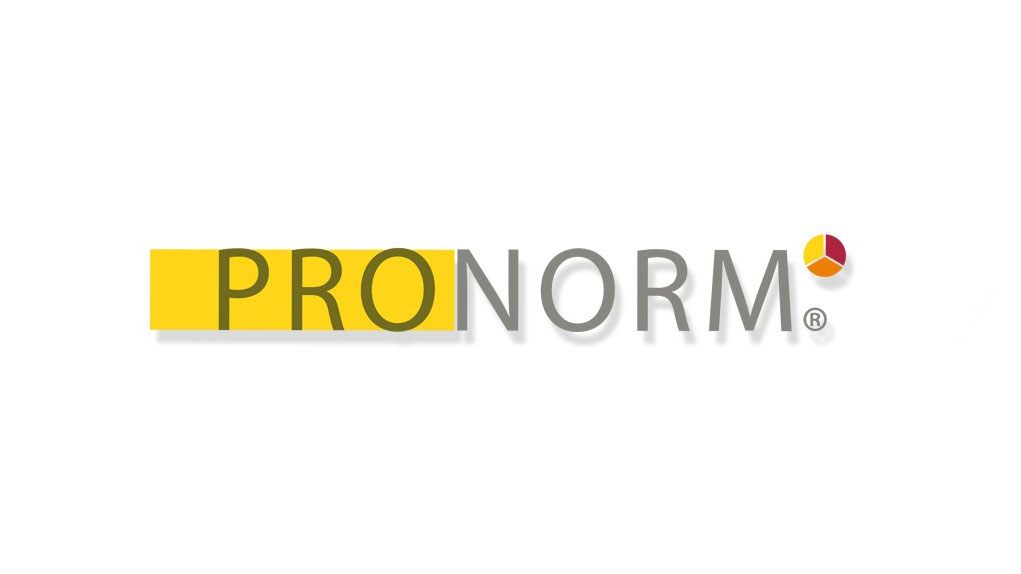 PRONORM Consulting GmbH Logo